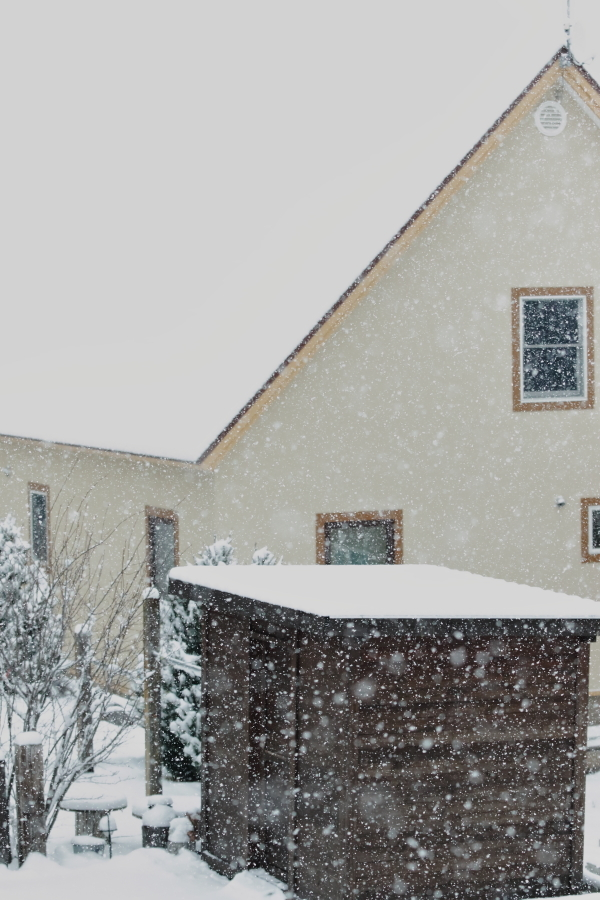 4D9A9995 雪が降る雪が降る