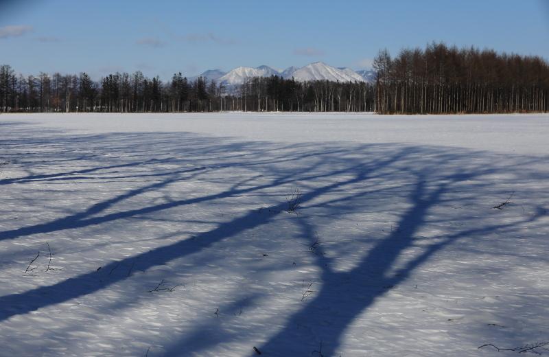 9844 雪原に映る影