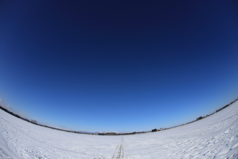 9863 青空と銀世界