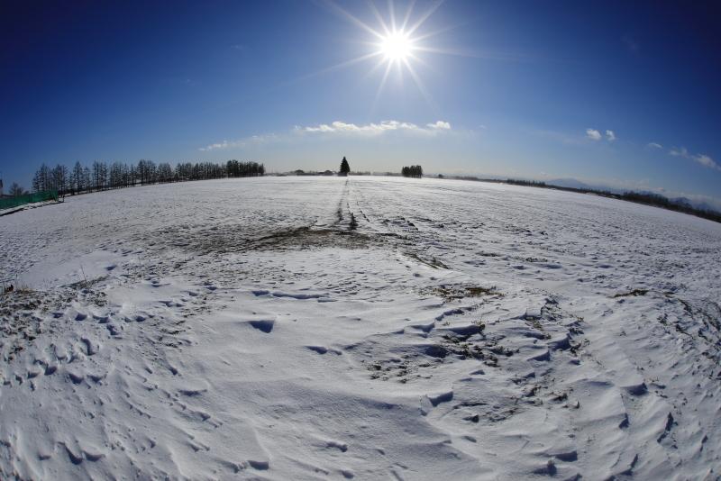 9877 農村の冬景色