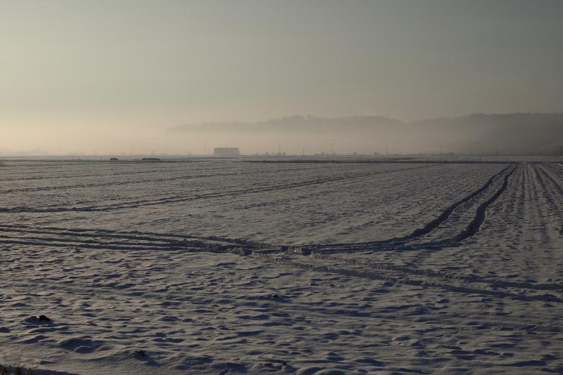 1058 雪に覆われた畑と霧