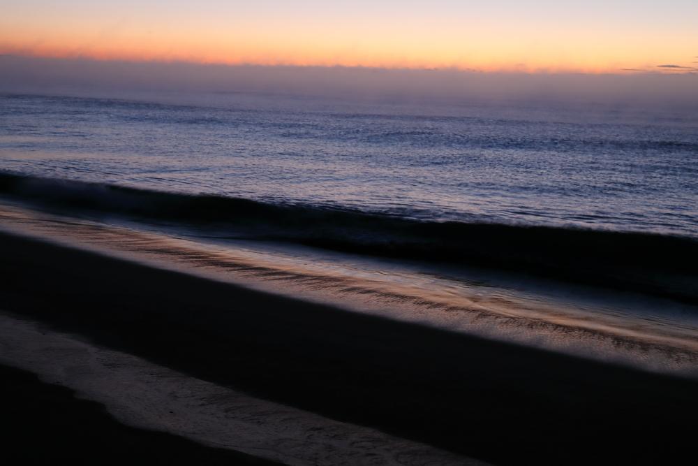 3223  海霧の朝