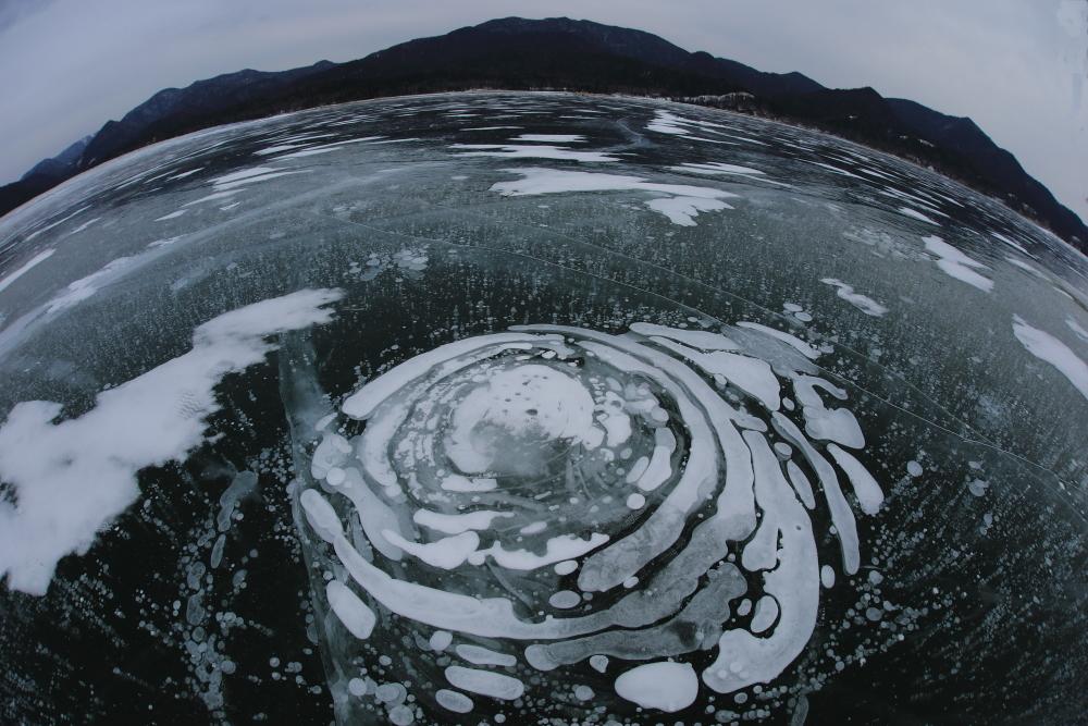 5162湖氷に咲いた花