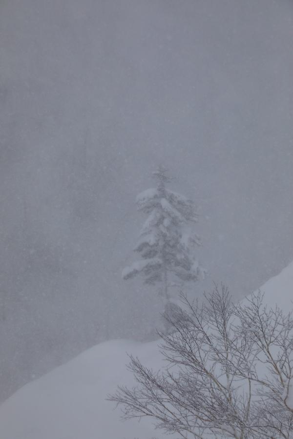 6718 吹雪の中で