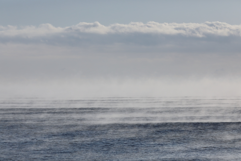 4479 豊北の海