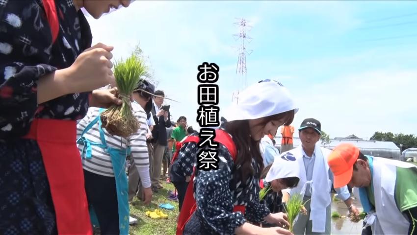熊谷市の農業に迫る〜田植え&稲刈り編01