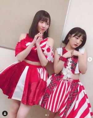 つばきF-20190105(1)