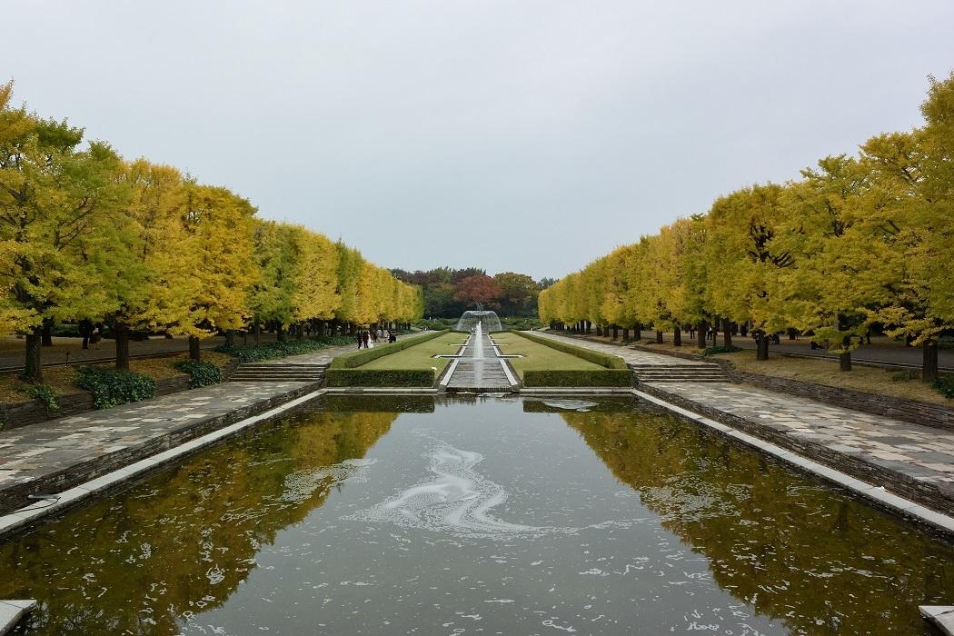 定点観測 Autumn 2018