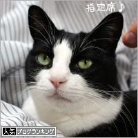 dai20190212_banner.jpg
