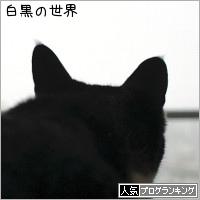 dai20190215_banner.jpg