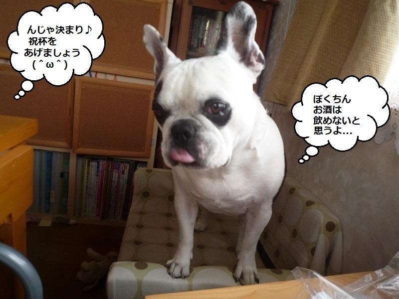 にこら201011to201108 191