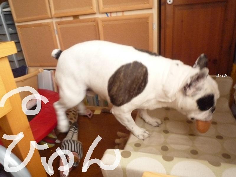 にこら201011to201108 165
