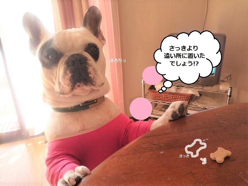 Pさよならぐう太2009 652 (2)