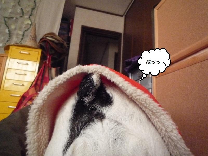にこら201011to201108 1193