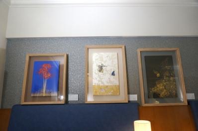gallery seek6
