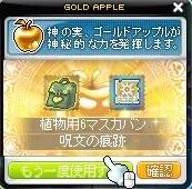 Maple_190116_220532.jpg