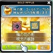 Maple_190116_220558.jpg