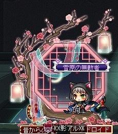 Maple_190116_220839.jpg