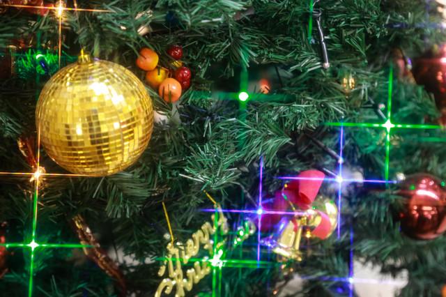 christmas0I9A4354_TP_V1.jpg