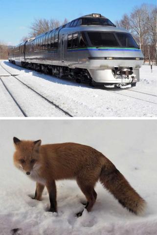 【インバウンド】「日本人お断り」の観光列車 JR北海道
