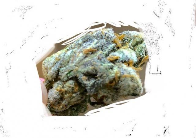 【Twitter】野菜・手押し…隠語で大麻購入持ちかけ、消えるSNSで密売…投稿した男「何度も大麻の写真を投稿したが削除されない」