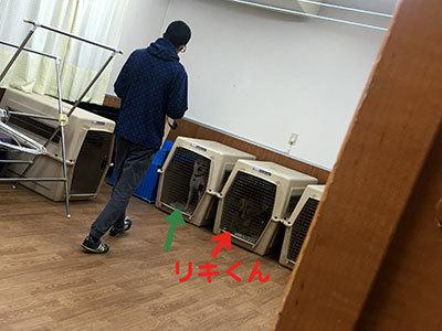 IMG_2665_20181203171050b1e.jpg