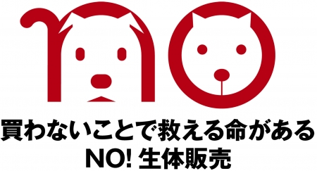 sayno.jpg