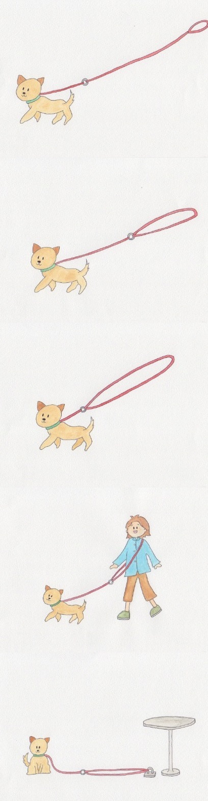 Dog index leash