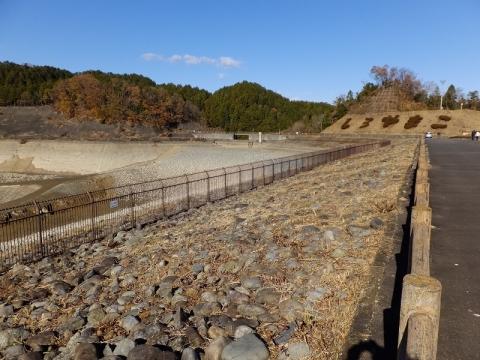 本沢ダム天端から左岸の眺め