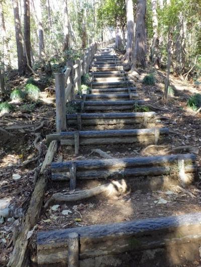 城山湖外周道・100段の階段