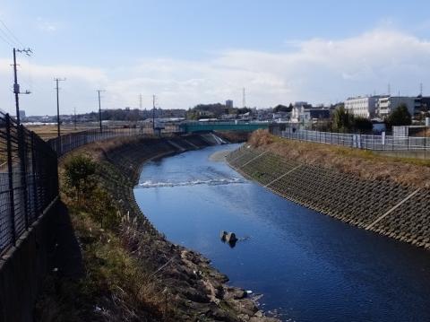 高鎌橋より境川下流を望む
