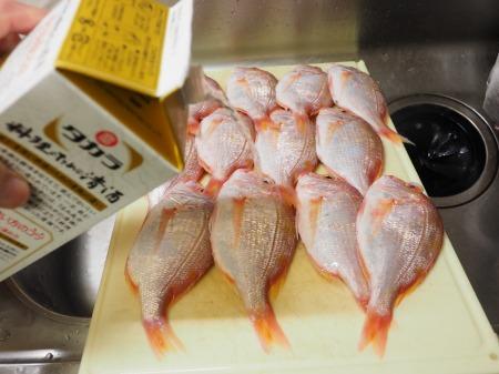 連子鯛仕込み028