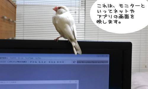 ぴのしゃんのパソコン教室_5