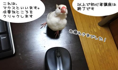ぴのしゃんのパソコン教室_6