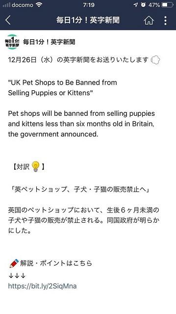 イギリス ペットショップ禁止 1