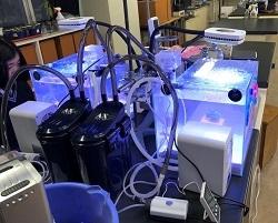 サンゴ実験器具
