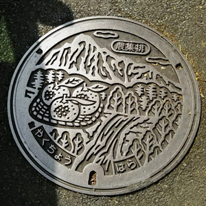 屋久島マンホールの蓋blog01