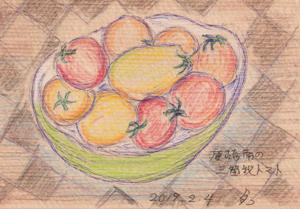 三箇牧のトマトblog01