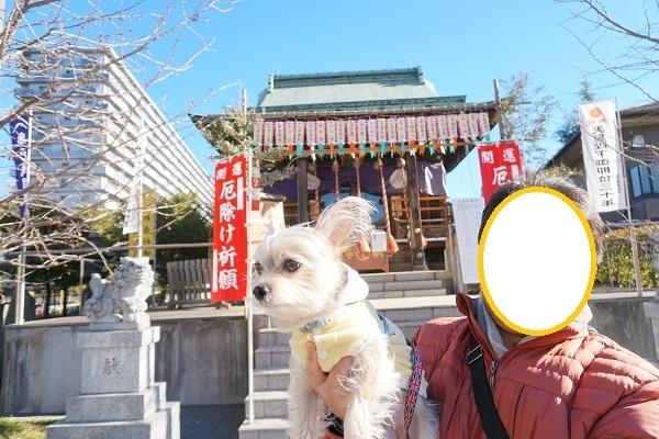 3C09S 浅間神社 1229