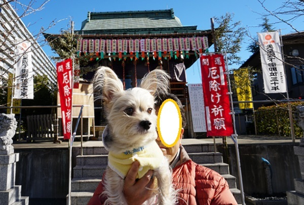 4C10S 浅間神社 1229