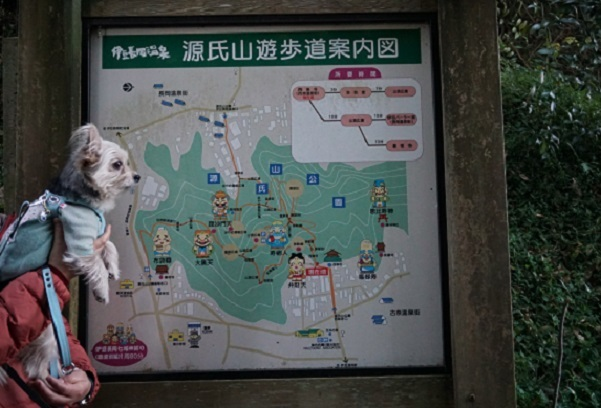 8G03 源氏山遊歩道 0105