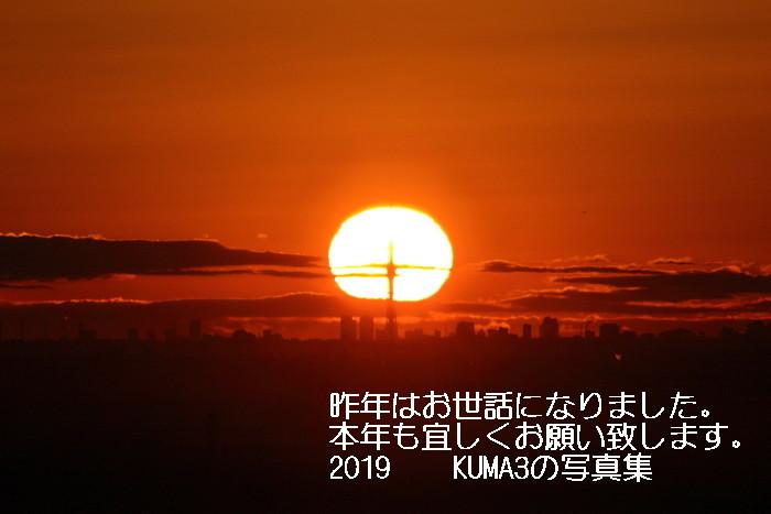 5O0A5441-2019.jpg