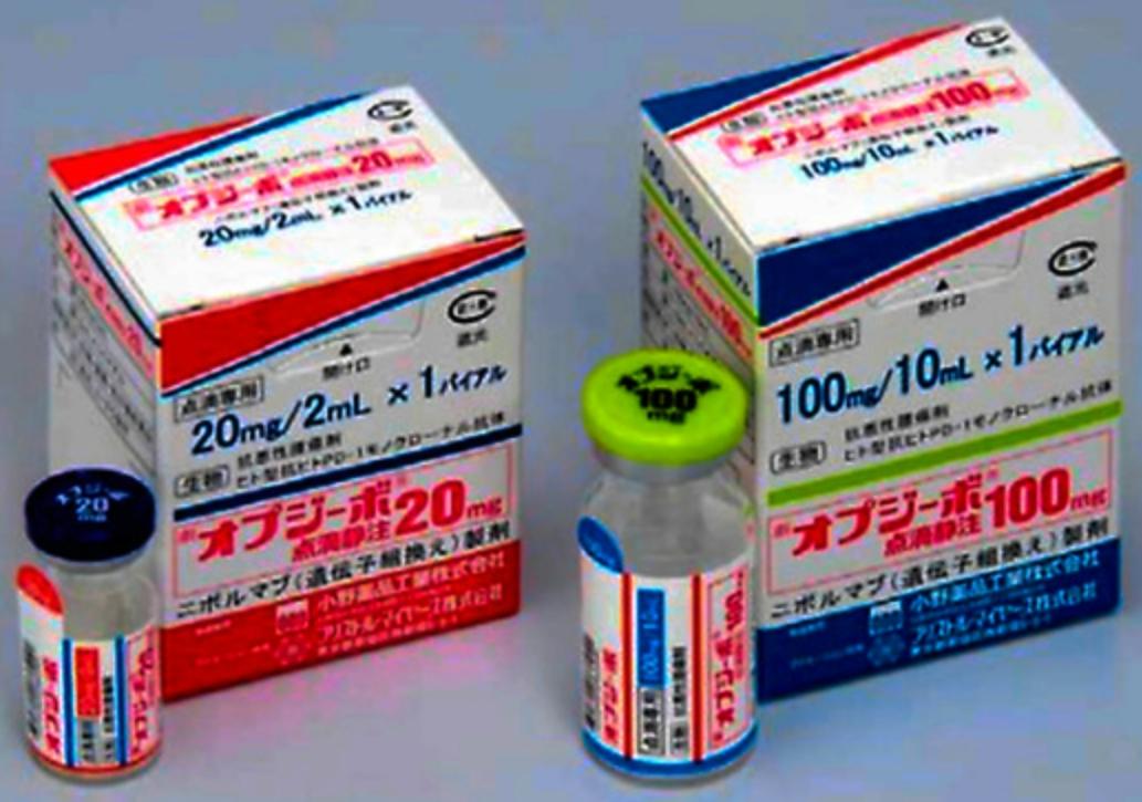 免疫チェックポイント阻害剤オプジーボ