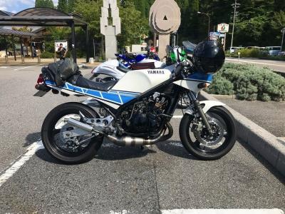 RZ250rr (5)
