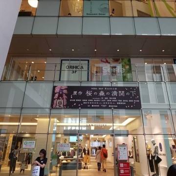 sakuranomori3.jpg