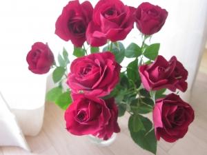 IMG_0871花