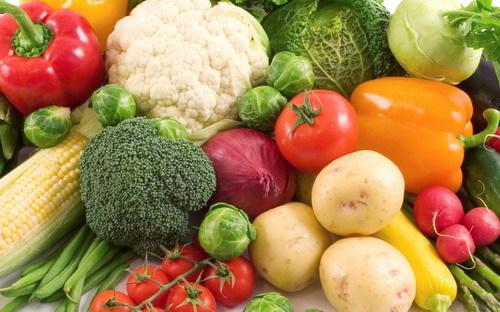 夏の野菜 生産出荷