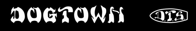 dts logo 640x104