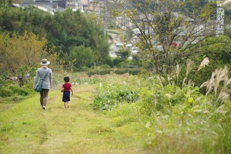 四十八瀬川のお散歩道