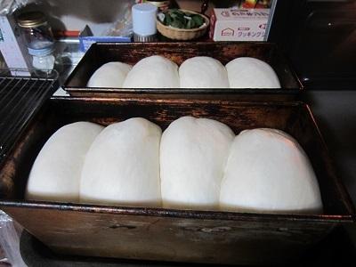 プレーン食パン-4